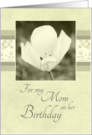 Happy Birthday Mom from Daughter - White Flower card