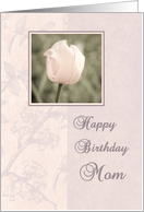 Happy Birthday Mom from Daughter - Pink Flower card