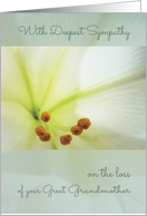 Deepest Sympathy, Comforting Memories, Great Grandmother, Easter Lilly card