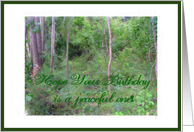 Hope you Birthday is a peaceful one! card