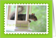 I'm Outa here,retirement, Announcement, squirrel card