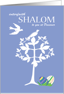 Interfaith Shalom at Passover Tree with White Doves card