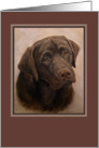 Sympathy for Dog Loss, Chocolate Labrador Portrait Painting card