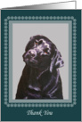 Thank You Dog Walker Pet Sitter, Black Labrador Portrait Painting card