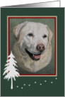 Christmas, Yellow Labrador Girl Portrait Painting, Winter Border card