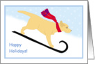 Yellow Lab Sled Dog in Winter Happy Holidays card