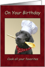 Birthday Chef Black Labrador Cooking card