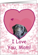 Love Mom Black Labrador Dog in Heart card