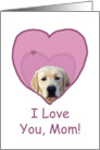 Birthday Love Mom Yellow Lab in Heart card