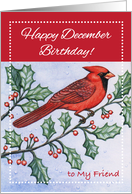 Birthday to Friend, December, cardinal, holly card