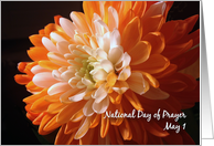 Nat. Day of Prayer, May 1 card