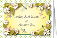 Mother's Day, dragonflies, white daisies card