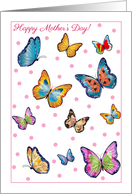 Mother's Day, Colorful Butterflies card