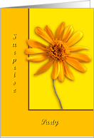 Yellow Daisy, Surprise Party card