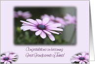 Great Grandparents, Twins, Congratulations, Flowers card