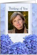 Thinking of You, Blue Hydrangeas, Photo Card