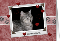 Welcome from Pet card