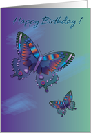 Happy Birthday Double Butterfly card