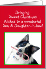 Australian Shepherd Sweet Christmas, Son and Daughter-in-law card