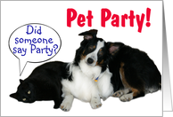 It's a Party, Pet Party card