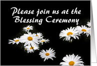 Daisies, Blessing Ceremony card