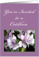 Flowers and Ferns, Cotillion Invitation card
