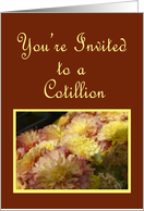 Mums and Burgundy, Cotillion Invitation card