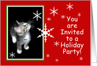 Snowflake Kitten You Are Invited to a Holiday Party card