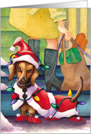Dachshund Lights : Funny Christmas Card