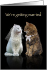 We're getting married Cats card