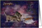 Scorpio Birthday - for Cat Lovers card