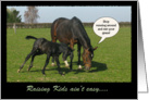 Funny Horse and Foal Mother's Day card