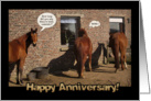 Wedding Anniversary, funny horses card