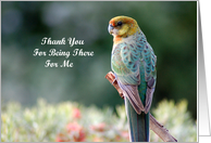 Card Thank You - For being there for me bird Western Rosella card