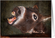 Animals & Pets Mother's Day - Laughing Donkey card
