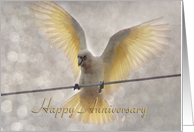 General Anniversary - Corella card