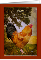 Thinking of Mom Vintage Chanticleer Rooster Card