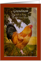 Thinking of Grandmom Vintage Chanticleer Rooster Card