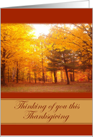 Thinking of you this Thanksgiving card
