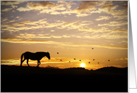 Sympathy, Silhouetted Horse and Birds in Sunset card