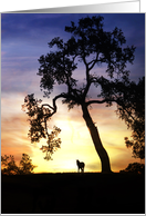 Sympathy card with silhouetted oak tree and horse in sunset card