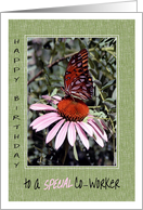 Birthday to Special Co-Worker Butterfly on Daisy card
