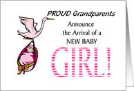 Stork Carrying Baby Girl Basket Grandchild Birth Announcement card