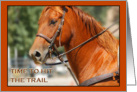 Time to hit the Trail Horse Card