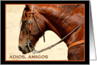 Adios Amigos Goodbye Spanish Horse Card