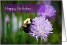 Happy Birthday-Bee On Flower card