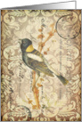 Any Occasion-Vintage Bird Postcard card