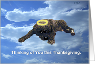 Portugese Water Dog in Sky with Halo card