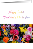 Brother & sister in law - Happy Easter Springflower bouquet card