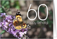 60th Happy Birthday Painted Lady Butterfly card